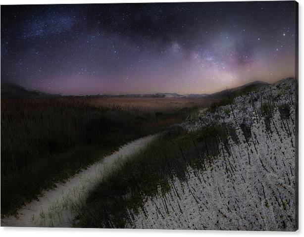Limited Time Promotion: Star Flowers Stretched Canvas Print