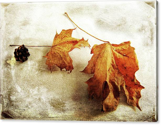 Limited Time Promotion: The Sound Of Autumn Stretched Canvas Print