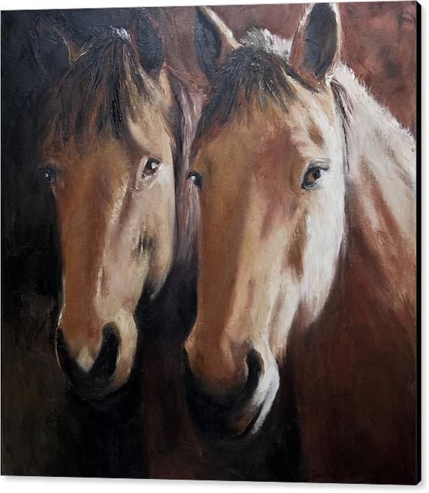 Horse Painting Canvas Print featuring the painting Dos Equis by Terri Meyer