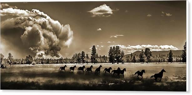 Wild Horse Fire, Sepia by Don Schimmel