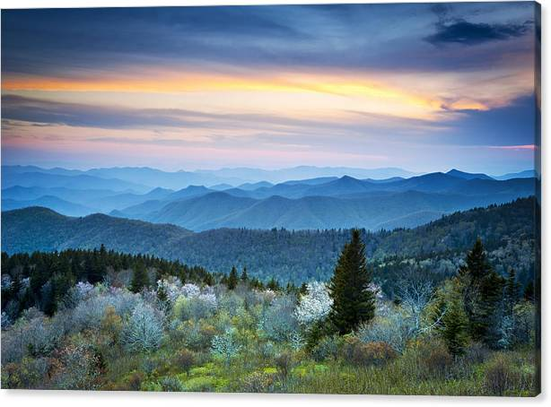 NC Blue Ridge Parkway Landscape in Spring - Blue Hour Blossoms by Dave Allen