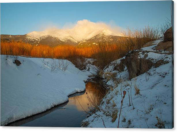 Morning glow of a mountain creek by Brian Lynch