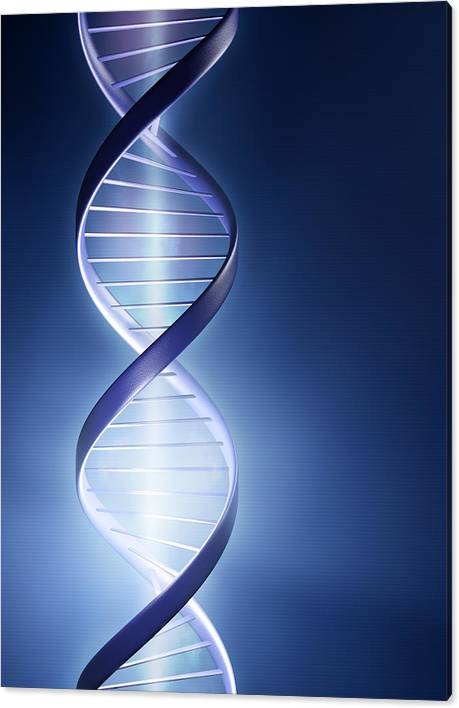 DNA Technology by Johan Swanepoel
