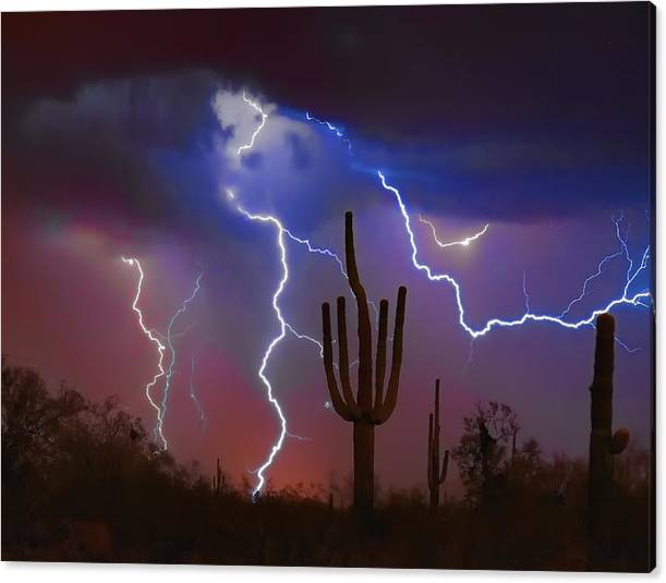 Limited Time Promotion: Saguaro Lightning Nature Fine Art Photograph Stretched Canvas Print by James BO Insogna