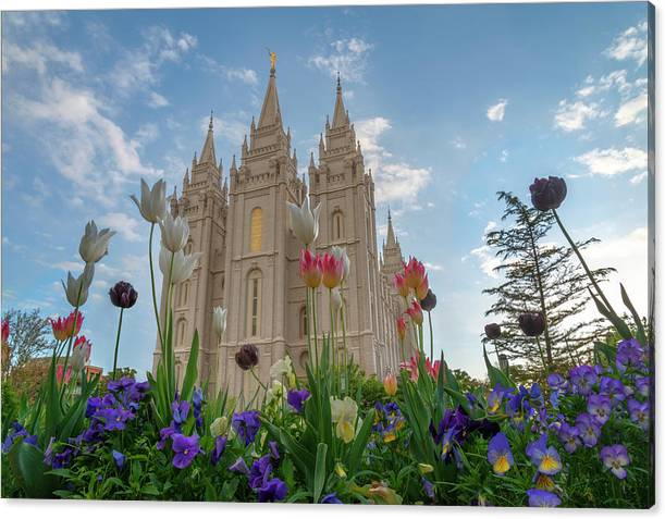 Flowers at Temple Square by Dustin  LeFevre
