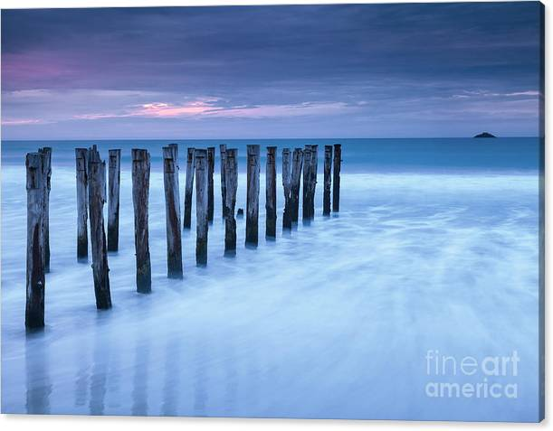 Old Jetty Pilings Dunedin New Zealand by Colin and Linda McKie