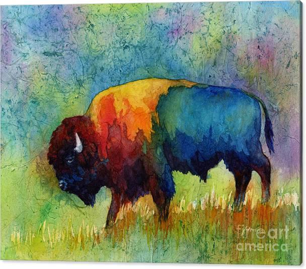 American Buffalo III by Hailey E Herrera