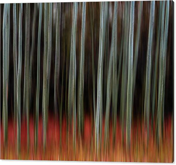 Limited Time Promotion: Walking Into Darkness Stretched Canvas Print by James BO Insogna