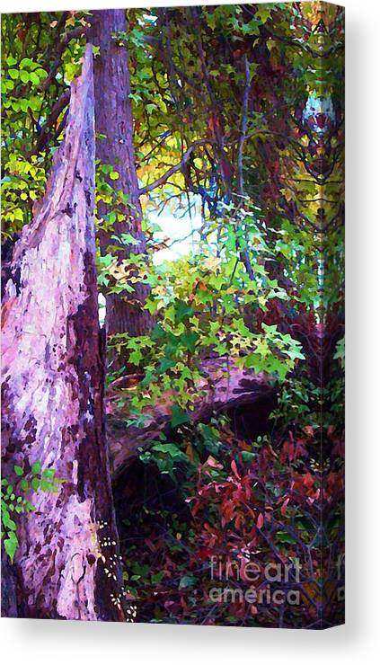 Trees Canvas Print featuring the photograph The Hope Of New Life by Steven Lebron Langston