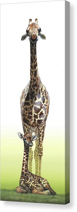 Giraffes Canvas Print featuring the painting Mothers Watch Is Keeping by Harold Shull