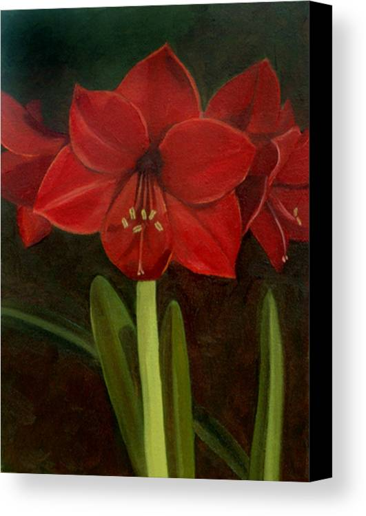 Amaryllis Canvas Print featuring the painting Amaryllis by Nancy Griswold