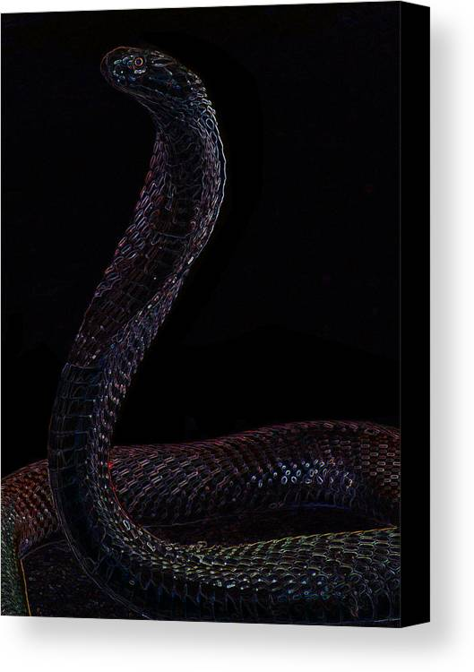 Snake Canvas Print featuring the digital art Snake by Bliss Of Art