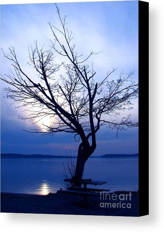 Emotion Canvas Print featuring the photograph Am I Blue? by Chris Anderson