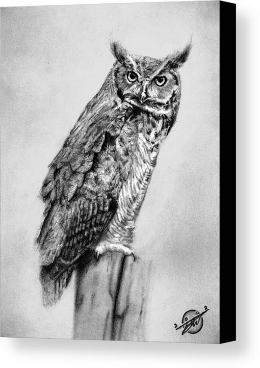 Bill\'s Great Horned Owl Canvas Print / Canvas Art by Brian Wylie