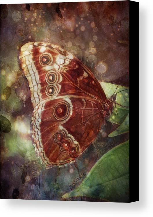 Butterfly Canvas Print featuring the photograph Butterfly In My Garden by Barbara Orenya