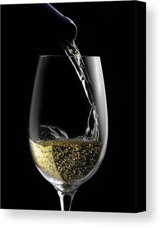 White Canvas Print featuring the photograph Chilled White by Dennis James