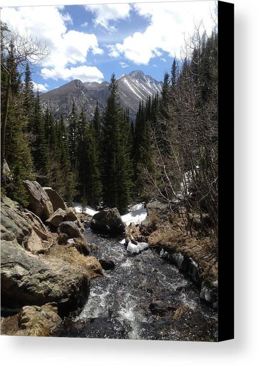 Estes Park Canvas Print featuring the photograph Colorado Wild by Mireille Damicone