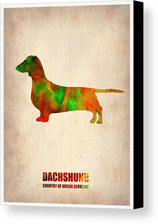 Dachshund Canvas Print featuring the painting Dachshund Poster 2 by Naxart Studio