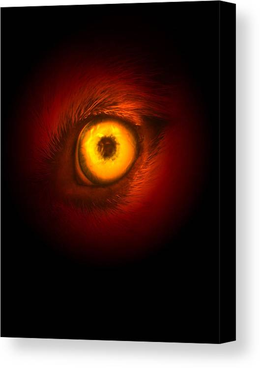 Husky Canvas Print featuring the digital art Eye Of Fire by Brianna Black