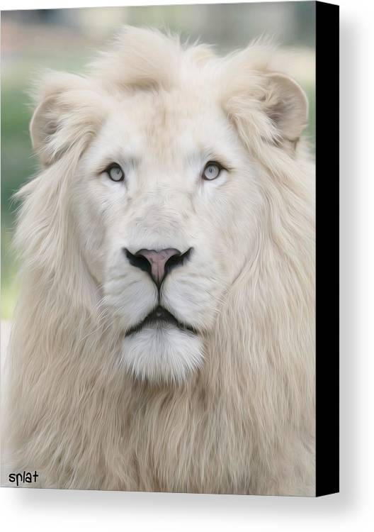 White Lion Canvas Print featuring the painting Ghost King by Sebastian Plat