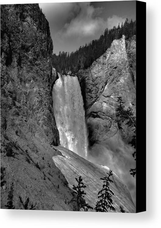 Lower Falls In Yellowstone In Black And White Canvas Print featuring the photograph Lower Falls In Yellowstone In Black And White by Dan Sproul