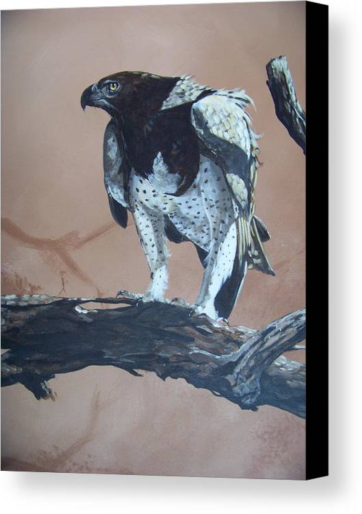 Martial Eagle Canvas Print featuring the painting Martial Eagle by Robert Teeling