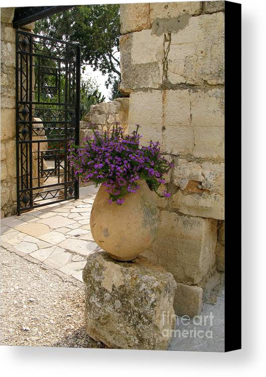 Flowers Canvas Print featuring the photograph Mount Tabor Purple by Nieves Nitta