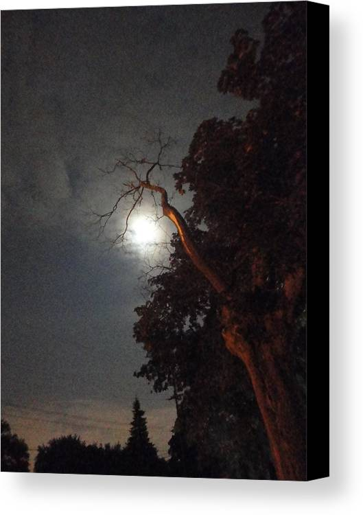 Guy Ricketts Photography Canvas Print featuring the photograph Reaching For The Moon by Guy Ricketts