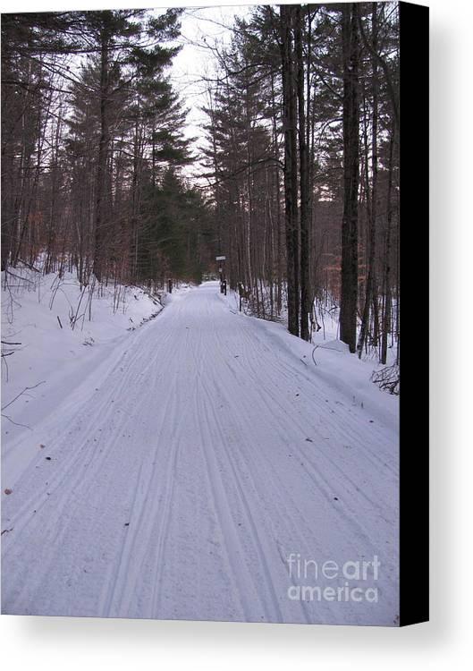 Snow Canvas Print featuring the photograph Snowmobile Trail by Nancie Johnson
