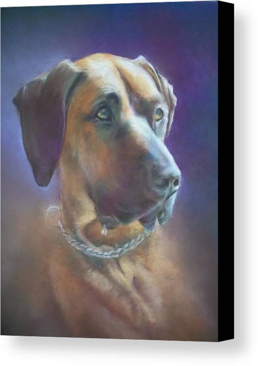 Pet Portrait Purple Ridge Back Dog Large Canvas Print featuring the pastel Splint by Preston King