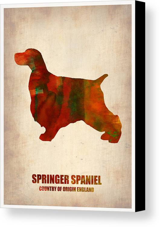 Springer Spaniel Canvas Print featuring the painting Springer Spaniel Poster by Naxart Studio