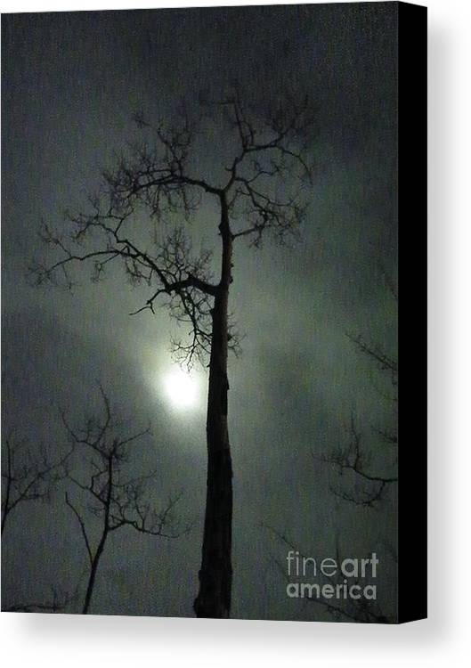 Standing Canvas Print featuring the photograph Standing Tall by Brian Boyle