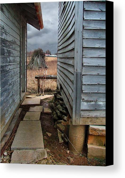 Dog Trots Canvas Print featuring the photograph The Dog Trot by Julie Dant