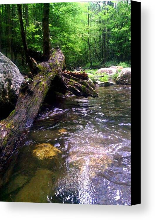River Canvas Print featuring the photograph The Fallen by Dwayne Gresham