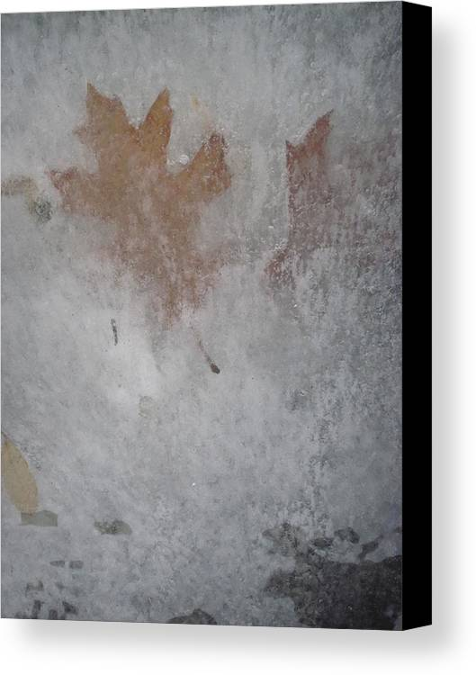 Guy Ricketts Photography Canvas Print featuring the photograph The Frozen Autumn by Guy Ricketts