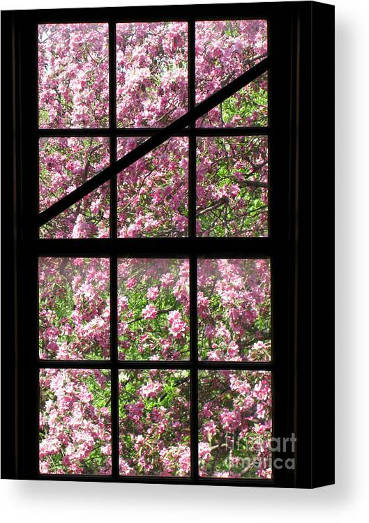 Window Canvas Print featuring the photograph Through An Old Window by Olivier Le Queinec