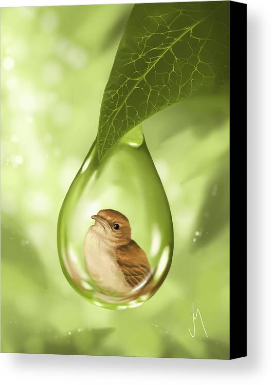 Bird Canvas Print featuring the painting Under Protection by Veronica Minozzi