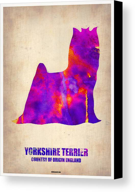 Yorkshire Terrier Canvas Print featuring the painting Yorkshire Terrier Poster by Naxart Studio