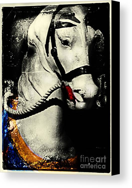 Carousels Canvas Print featuring the photograph Portrait Of A Carousel Pony by Colleen Kammerer