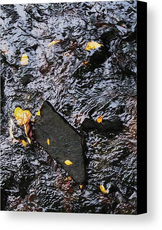 Black Rock Yellow Leaves Water Canvas Print featuring the photograph Black Rock At Graue Mill by Todd Sherlock