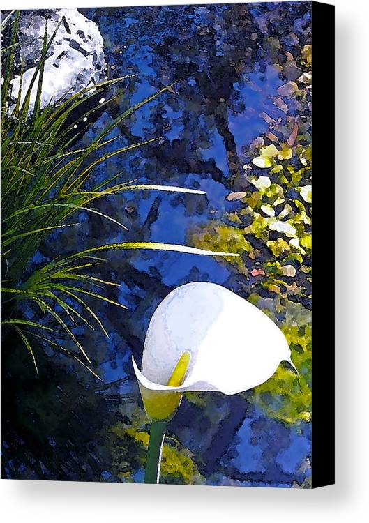 Floral Canvas Print featuring the photograph Calla Lily 6 by Pamela Cooper