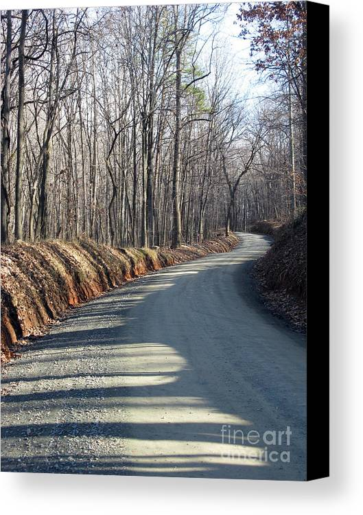 Shadow And Light Canvas Print featuring the photograph Morning Shadows On The Forest Road by Ausra Huntington nee Paulauskaite