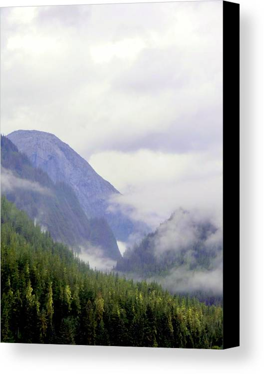 Mountains Canvas Print featuring the photograph Purple Mountain Majesties by Mindy Newman
