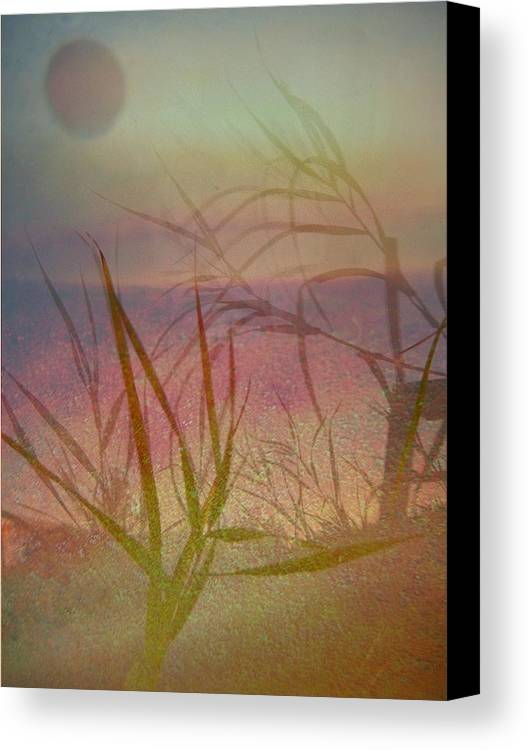 Scenery Canvas Print featuring the photograph Windswept by Shirley Sirois