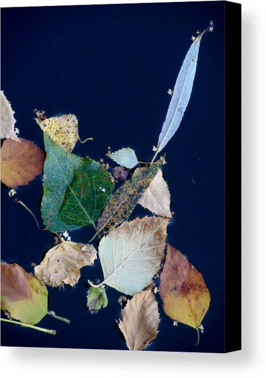 Autumn Canvas Print featuring the photograph Autumn Leaves Abstraction by Valia Bradshaw