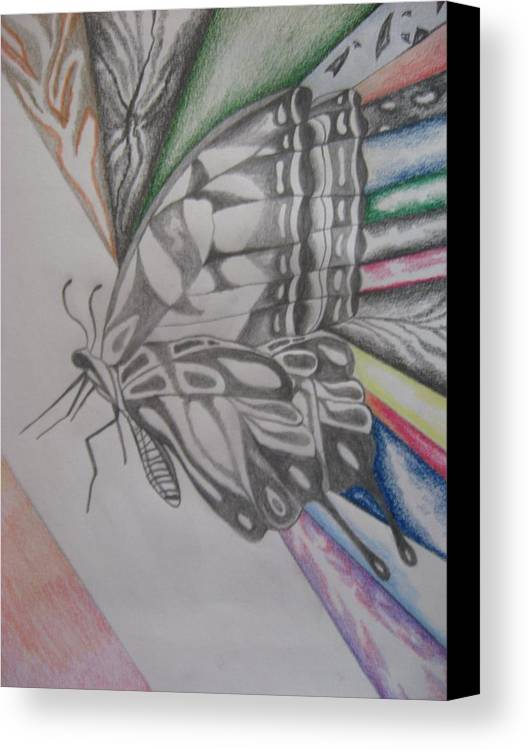 Butterfly Canvas Print featuring the drawing Butterfly Light by Theodora Dimitrijevic