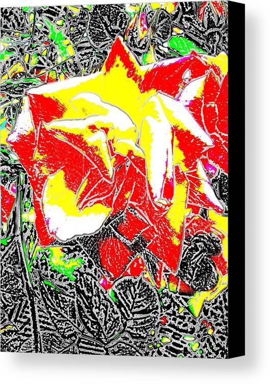 Rose Canvas Print featuring the digital art A Rose Is by Tim Allen