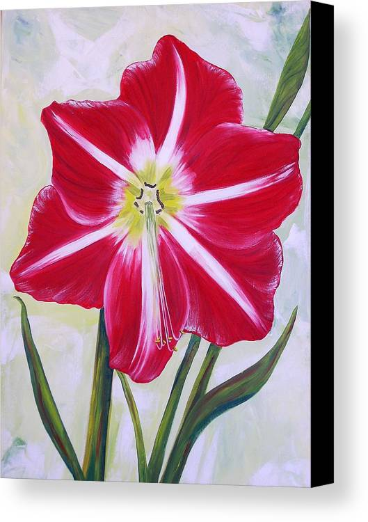 Flowers Canvas Print featuring the painting Amaryllis by Murielle Hebert
