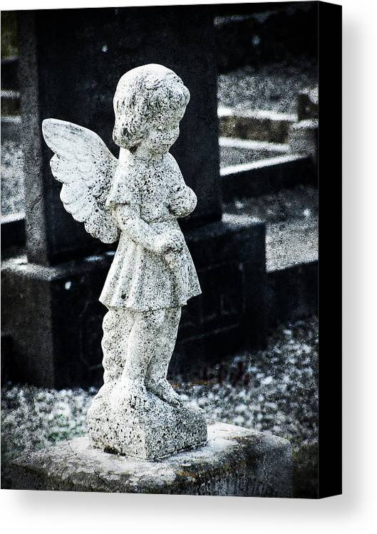 Ireland Canvas Print featuring the photograph Angel In Roscommon No 3 by Teresa Mucha