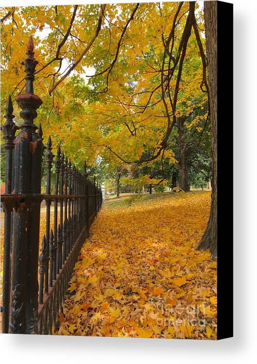 St Louis Missouri Canvas Print featuring the photograph Autumn Leaves At Lafayette Park by Debbie Fenelon